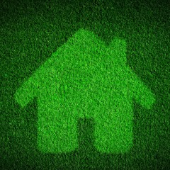 Resolve to Greenify Your Home this Year
