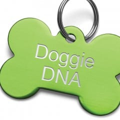 Doggie DNA