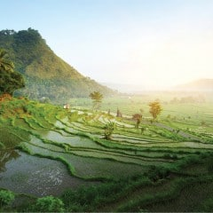 Magical Upcountry Bali