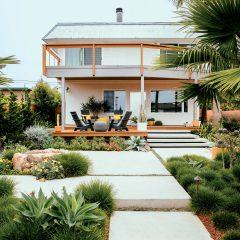 Succulent Spaces