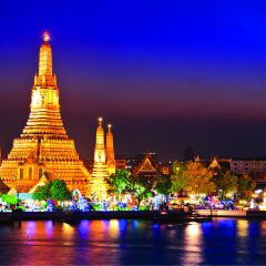 The Bright Lights of Bangkok